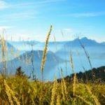 Norwegia – warto odwiedzić?